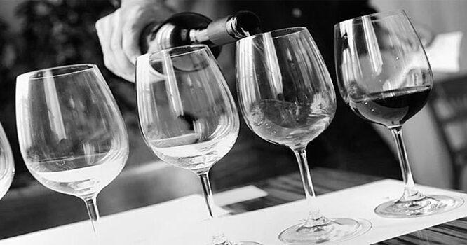 Las 5 mejores Catas de vino en Barcelona